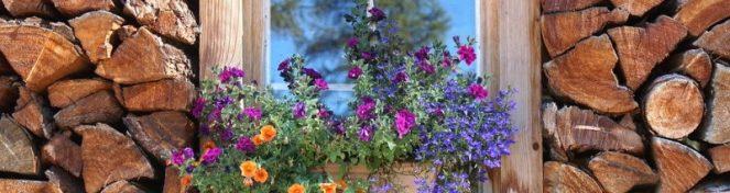 Παράθυρο με λουλούδια ανάμεσα σε ξύλα.